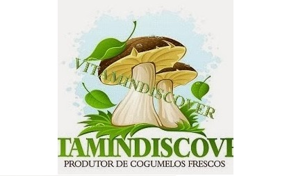 vitamindiscover